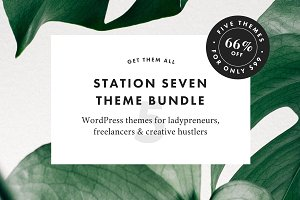 66% Off! Theme Bundle for Creatives
